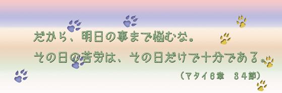だから、明日の事まで悩むな。その日の苦労は、その日だけで十分である。(マタイ6章34節)